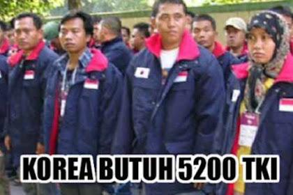 Korea Selatan Buka Pendaftaran Baru TKI, Kuota 5200 Pekerja Segera Daftar - Ini Jadwalnya, Gaji Plus Lembur Diatas 30 Juta Sebulannya