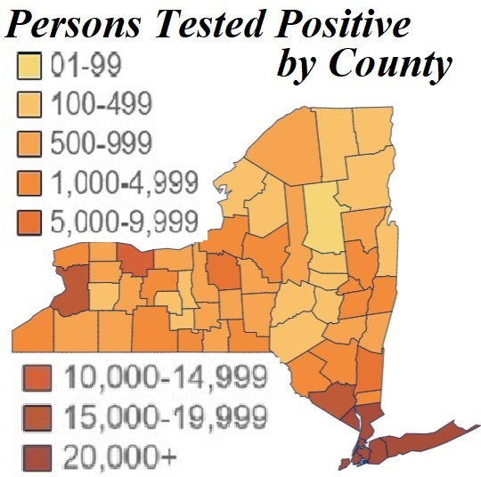 Covid19 Cases: Daily; Get Facts by County