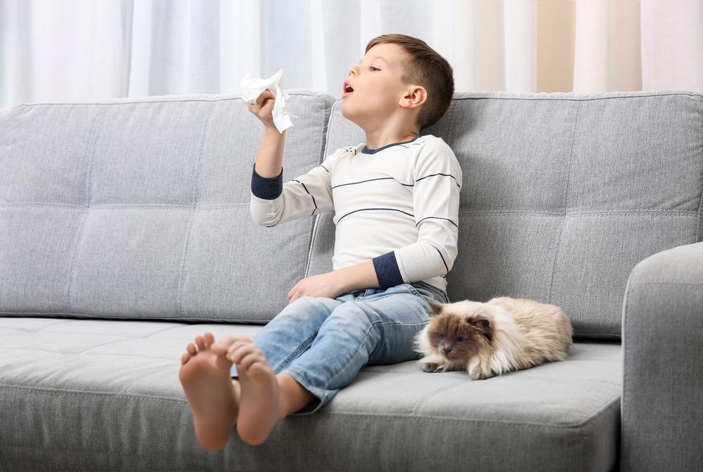sprzątanie w pokoju małego alergika