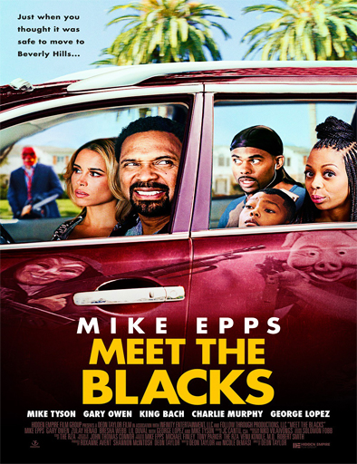 Ver Meet the Blacks (2016) Online