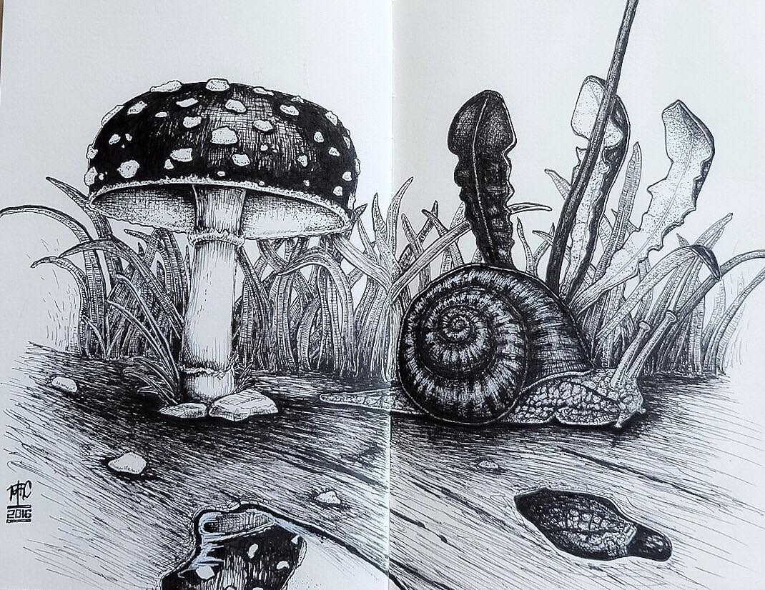 01-A Snail-and-its-Travels-mrc_artworks-Sketching-Inspirations-on-a-Moleskine-Notebook-www-designstack-co