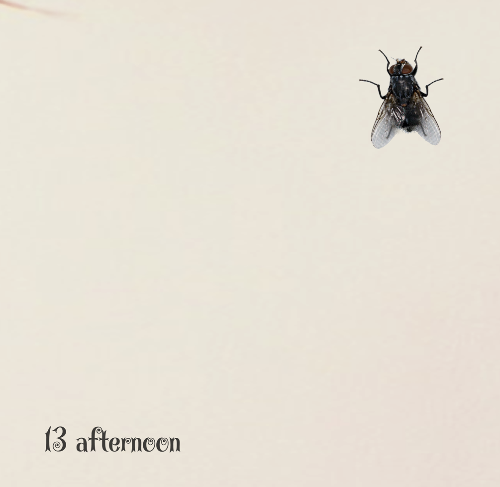 13 afternoon VOL. 606
