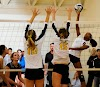 100 Atividades para Voleibol Escolar