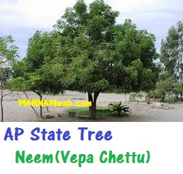 AP - State new Symbols for the State of Andhra Pradesh