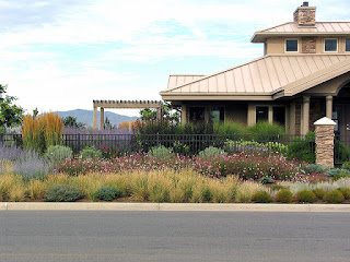 What is xeriscaping anyway?