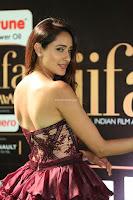 Pragya Jaiswal Sizzles in a Shantanu Nikhil Designed Gown  Exclusive 013.JPG