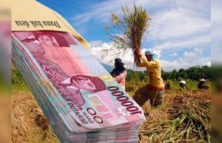 Komisi Pemberantasan Korupsi (KPK) mengungkapkan bahwa potensi penyelewengan dana desa disebabkan karena masih minimnya sosialisasi terkait dengan peruntukan dan penggunaan anggaran tersebut kepada para kepala desa.