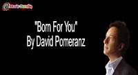 Born For You By David Pomeranz (Karaoke, Mp3, Minus One and Lyrics) Free Download