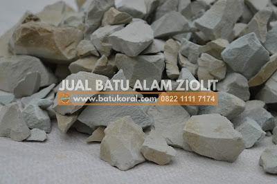 batu zeolit untuk kolam ikan murah