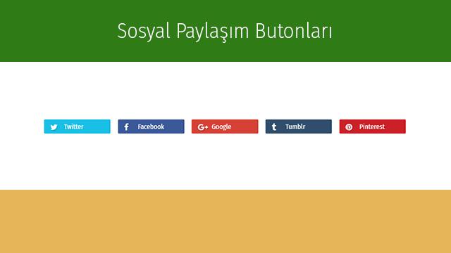 Blog Hazır Sosyal Paylaşım Butonları İconlu