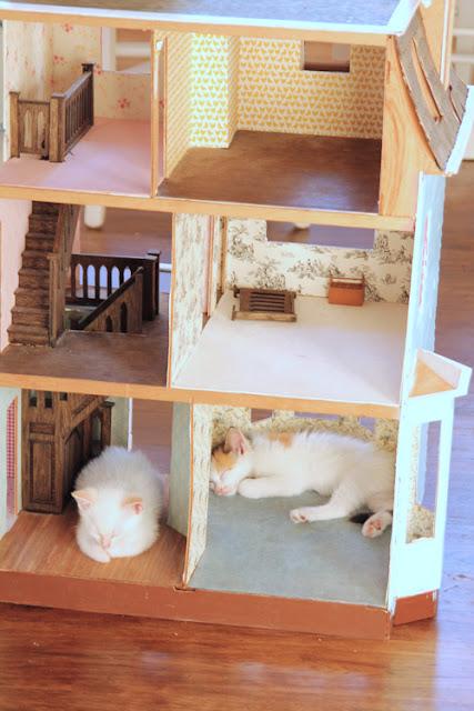 Dollhouse In Progress Girl Inspired