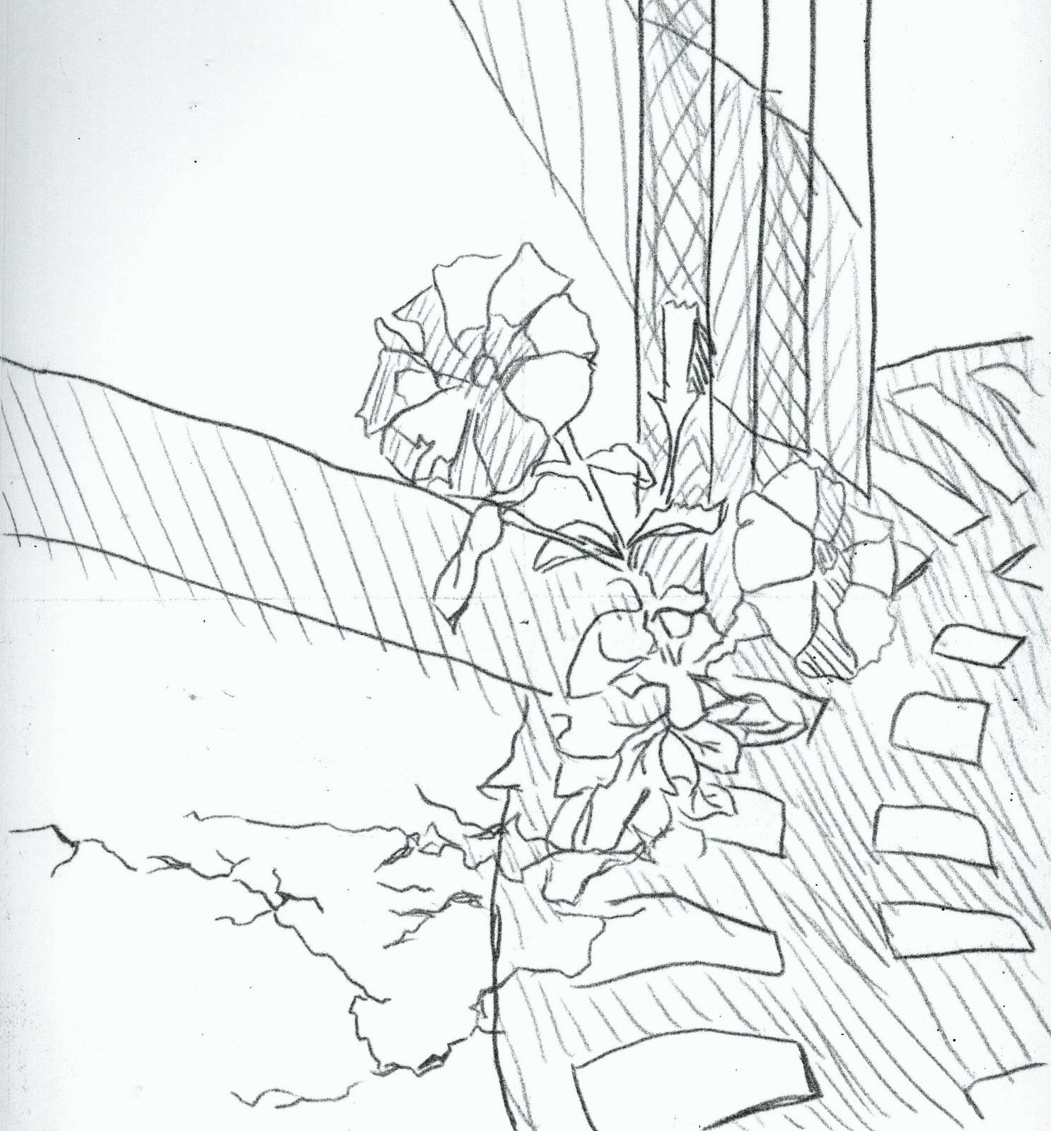 Simbisai's Drawing Journal & Sketches