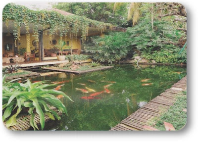 alam indah flowers: kolam koi ideal