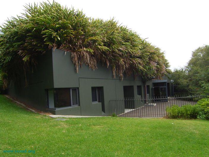 decoracao Telhados Verdes