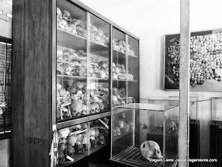 Relato da viagem a Phnom Penh, capital do Camboja, uma das piores vítimas da loucura dos ditadores. Mas uma cidade que surpreendeu!