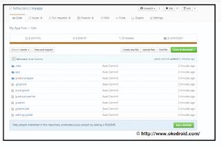 repository server (Github)
