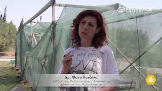 Πρόσω ολοταχώς ο Μελισσοκομικός Σύλλογος Λαμίας: Σεμινάριο με την Φ.Χατζήνα και προσφορά για μελισσοκομικές ζυγαριές