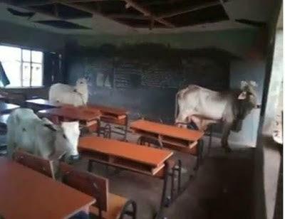 I Survived Several Bullets Herdsmen Fired At Me, says Kogi School Principal