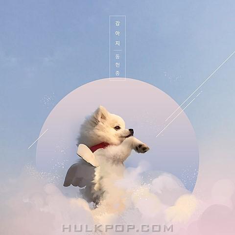 DongHyunJong – 강아지 – Single