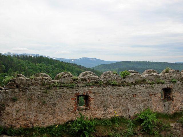 lasy, mury, z góry, zamek, widok