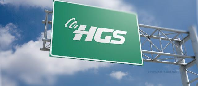 Plakadan HGS-OGS Geçiş İhlali(Ceza) Sorgulama