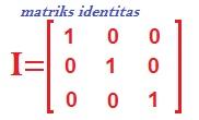 identitas matriks