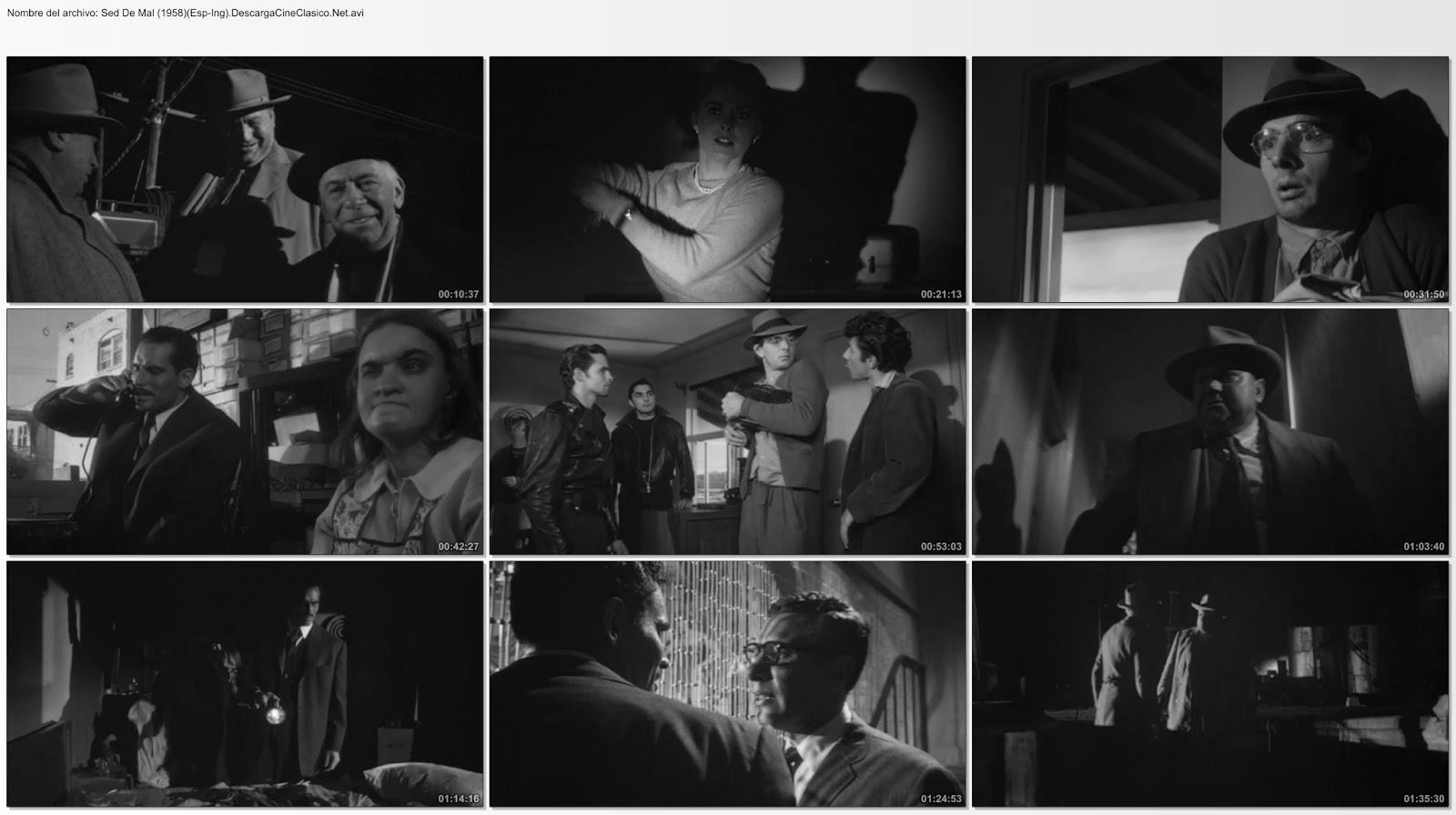 Sed De Mal 1958 Descargar Y Ver Online Español Y Vose Hd 720