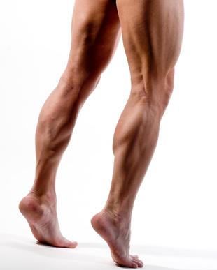 FAQs des Muskelaufbau-Trainings [BesserTrainieren]: Einen