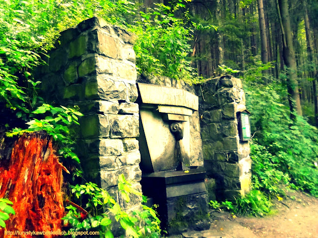 Źródło Antala Staska w lesie na Riegrovej Stezce