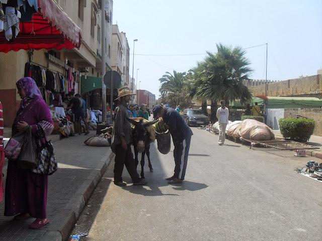 burros medina marruecos
