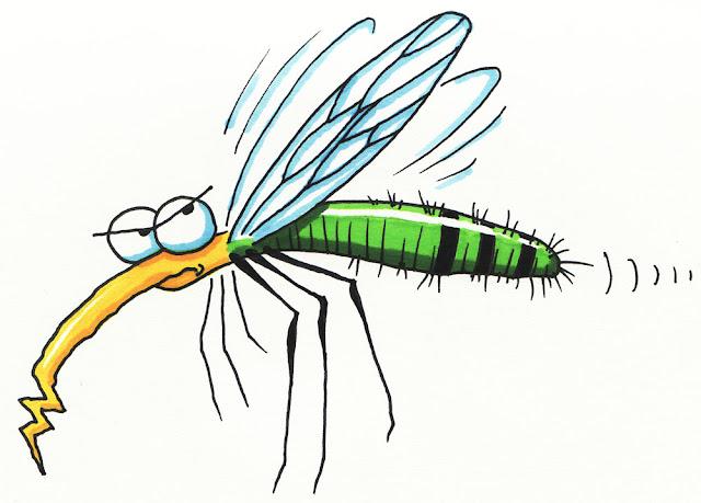 Αποτέλεσμα εικόνας για Κουνούπι