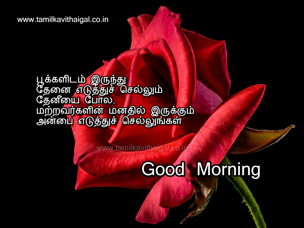 Good Morning Love Kavithai : Good morning kavithai in tamil kavithaigal