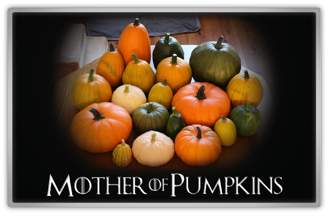 Mother of Pumpkins pumpkin harvest proud mommy got game of thrones beauty blogger kbeauty blog fall autumn september lifestyle daily life