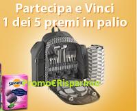 Logo Concorso ''Summer PicNic'' : vinci gratis Zaini picnic e forniture Sunsweet