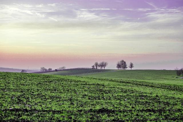 Stille -  das Landleben genießen