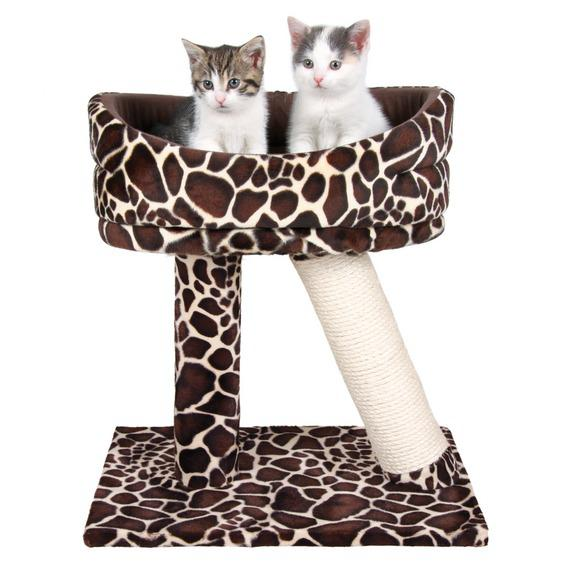 лежанка, домик, лежанка для питомца, для кошки, для собаки, для животных, кроватка для кошки, кроватка для собаки, для домашних питомцев, своими руками, лежанка своими руками, кроватка своими руками, мастер-класс, домик для кошки, домик для питомца, домик для кошки своими руками http://prazdnichnymir.ru/ , как изготовить лежанку для кошки своими руками, как изготовить лежанку для собаки своими руками, как сшить лежанку для кошки мастер-класс, как сшить лежанку для собаки мастер-класс, как самостоятельно сделать домик ждя кошки, как самостоятельно сделать домик для собаки, лежак для собаки больших размеров своими руками, чем набить лежанку для собаки, как сшить дождевик для собаки своими руками пошаговая инструкция, домик для собаки своими руками из поролона фото выкройка, лежанка для собаки, лежанка для собаки своими руками из старого свитера, оригинальный домик для кошки, оригинальный домик для собаки, оригинальная лежанка для питомца, лежанка для кошки своими руками пошагово, лежанка для кота своими руками выкройка, лежак для кошки своими руками выкройка, как сделать домик с когтеточкой для кошки своими руками в домашних условиях, как сделать комплекс для кошки своими руками в домашних условиях, как сделать лежанку для кошки своими руками из свитера, стойка для кошек своими руками, инструкция с размерами с фото, лежанка для кошки выкройка, инструкция из свитера лежанка, лежанка, домик, лежанка для питомца, для кошки, для собаки, для животных, кроватка для кошки, кроватка для собаки, для домашних питомцев, своими руками, лежанка своими руками, кроватка своими руками, мастер- класс, домик для кошки, домик для питомца, домик для кошки своими руками http://prazdnichnymir.ru/ ,Вельветовая лежанка с бантиками,Дом для кошки из коробки и монтажной пены,Домик для кошки Chain Chomp,Домик для кошки из поролона,Домик для собаки и кошки. Самый легкий вариант,Кошкин дом из футболки и вешалок,Кошкин дом из коробки и футболки,Кошкин дом на вашей территории,Квадратная кроватка с р