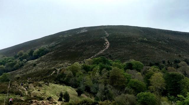 El Toral