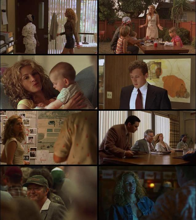 Erin Brockovich 2000 Dual Audio Hindi 480p BluRay