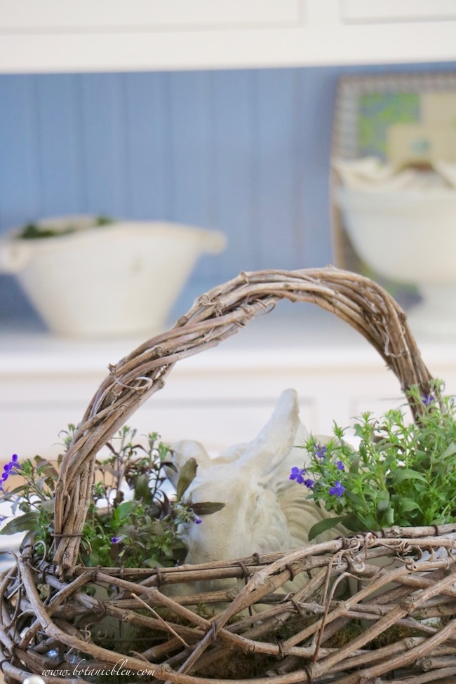 Blue lobelia flowers in a French country floral centerpiece bunny basket complement blue and white decor