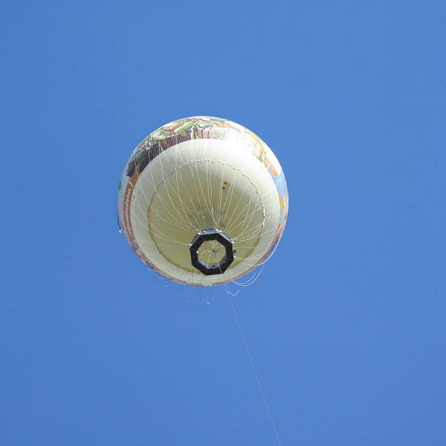 כדור פורח קרוב אלינו בפארק הירקון בתל אביב