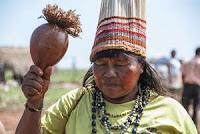 http://juanpuchefernandez.blogspot.com/2016/04/etnografia-indigenas-en-peligro.html