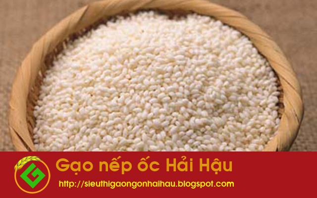 Gạo nếp ốc Hải Hậu - Thứ quà lưu giữ hương vị quê hương