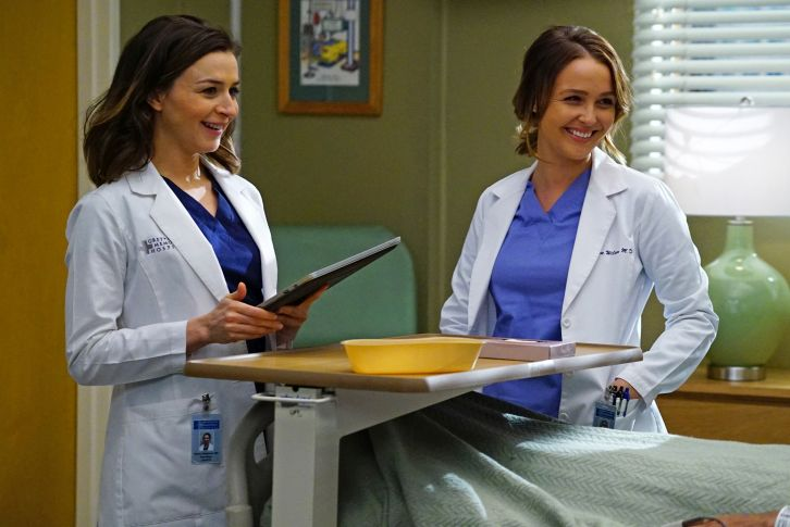Grey's Anatomy - Episode 12.23 - At Last - Press Release + Promotional Photos