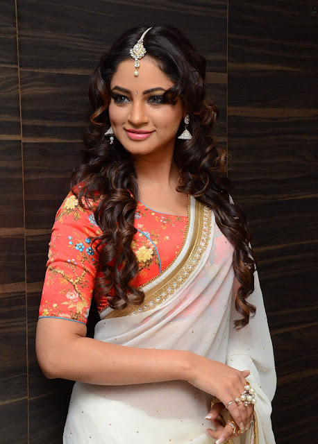Shilpi Sharma in Chiffon Saree and Floral Blouse