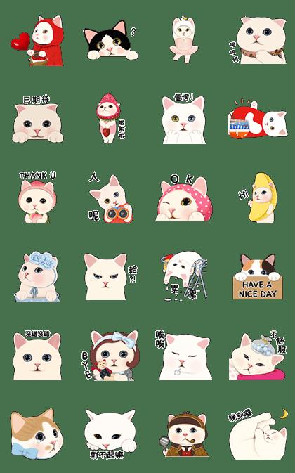 Choo Choo Cats: Taiwan Edition