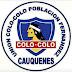 Colo Colo de Población Fernández se arma para Campeonato Nacional de ANDABA sub 45 en Cauquenes