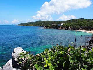 paya bay resort, roatan, naturism, beaches, views, nature trails, tropical garden reserve,