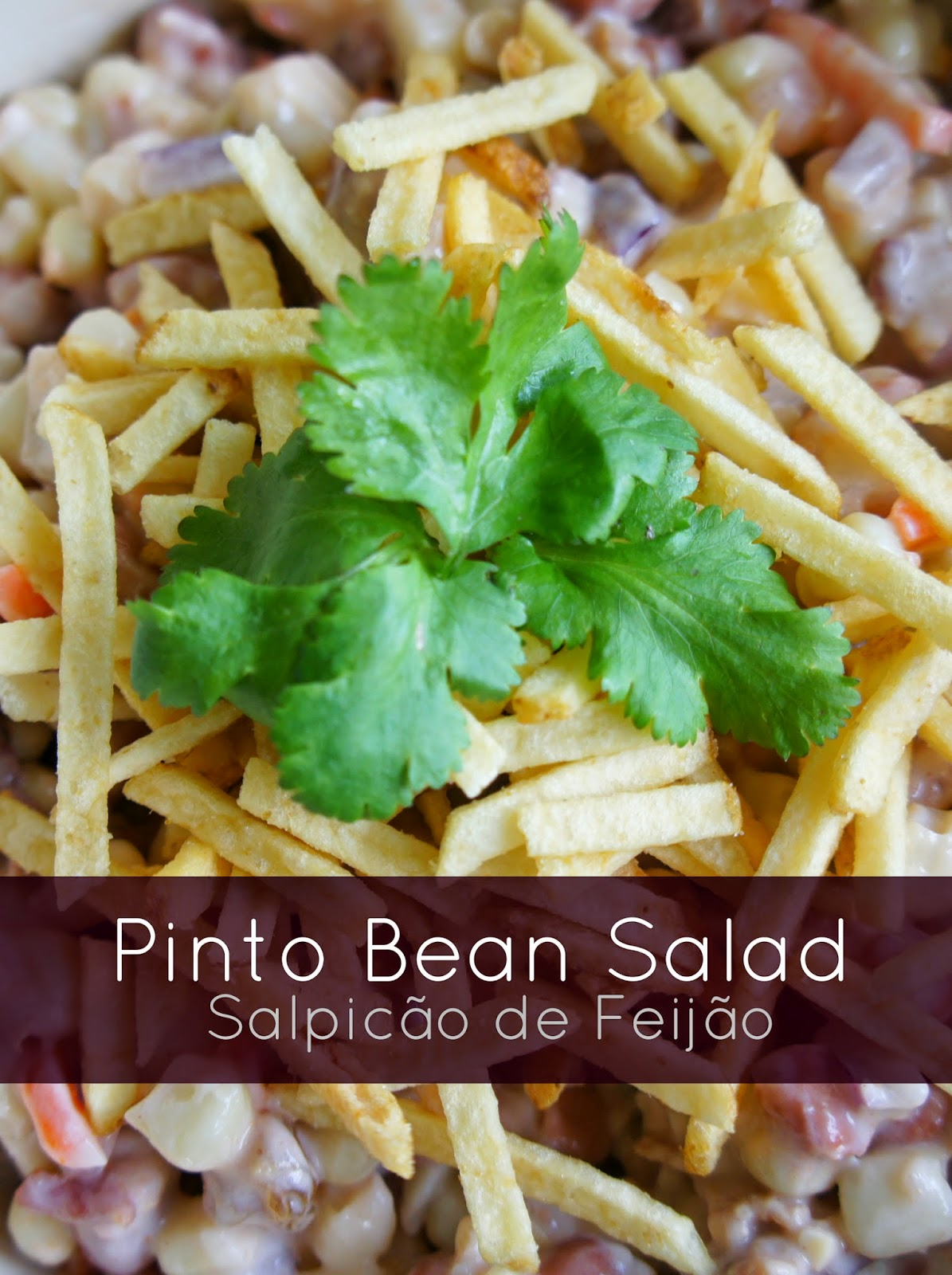 Pinto Bean Salad Recipe using Bushs Cocina Latina