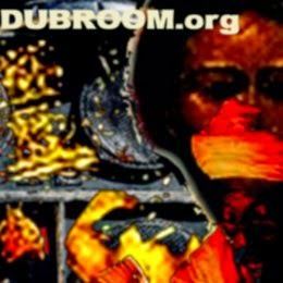 Dubroom reviews Dubophonic