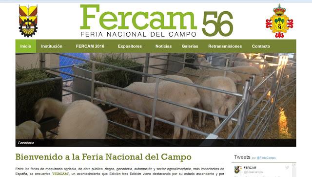 http://fercam.manzanares.es/